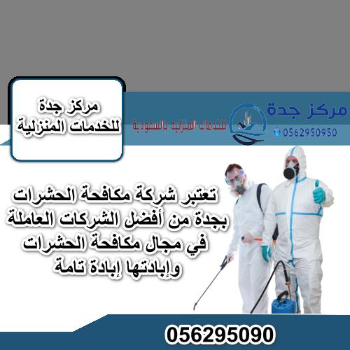 Photo of شركة مكافحة الحشرات بجدة