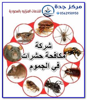 Photo of شركة مكافحة حشرات في الجموم