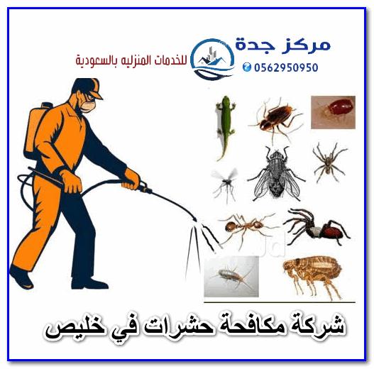 Photo of شركة مكافحة حشرات في خليص
