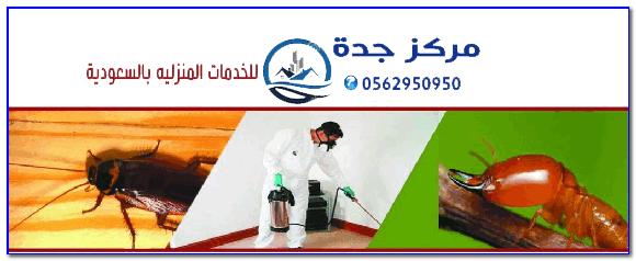 Photo of شركة مكافحة حشرات بجدة ومكة