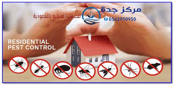 Photo of شركة مكافحة حشرات بجده